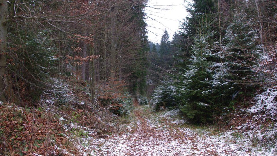 Cesta k lomům používaná už v 19. století