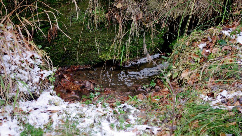 Porezní hornina propouští mnoho pramenů vody až na povrch