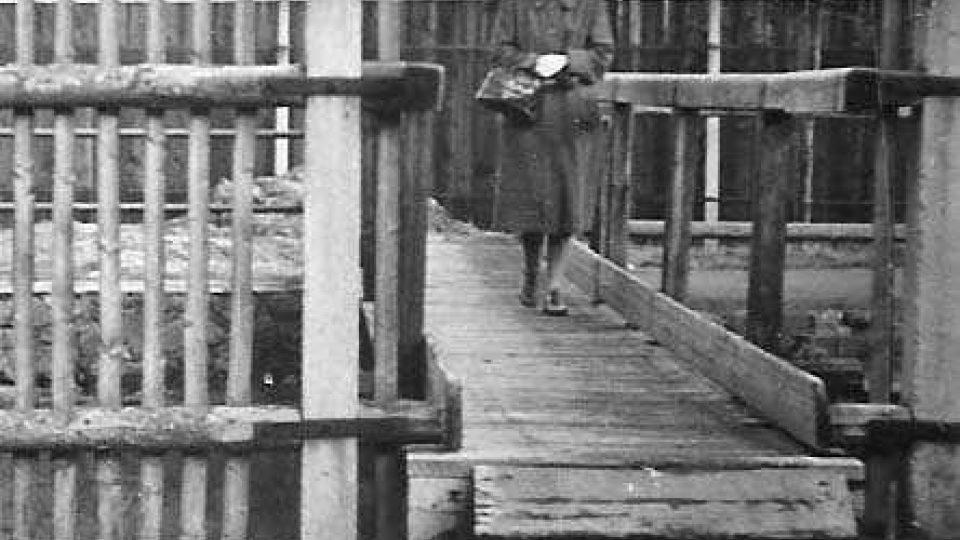 Maminka L. Kocierzové na mostku přes struhu do gruntu, asi před válkou