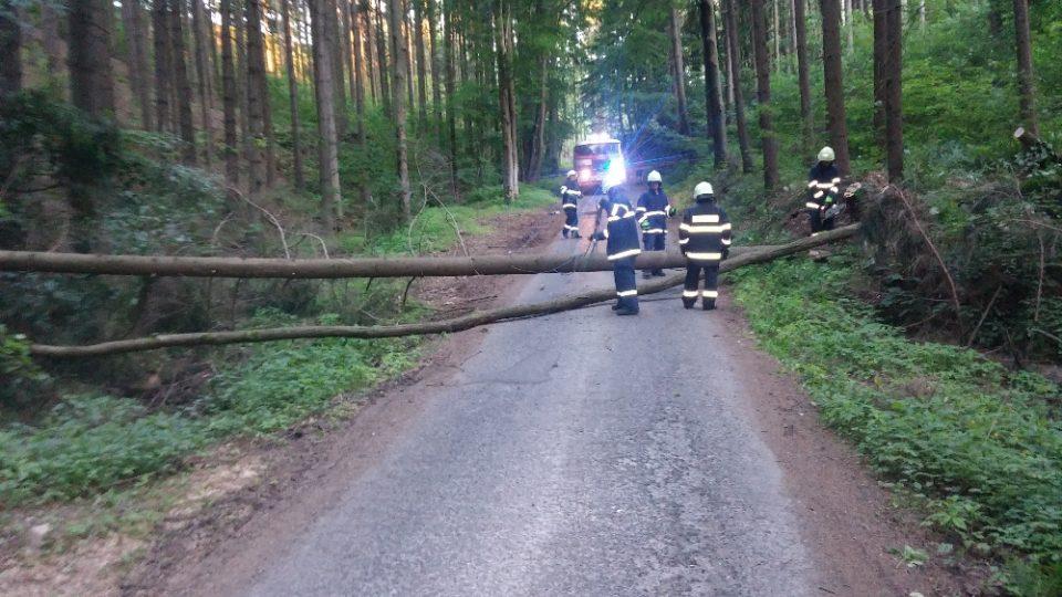 Úklid stromů po vichřici 2015