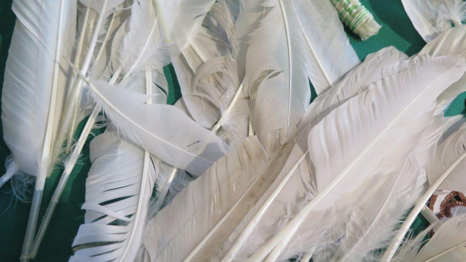 Hospodyně vyráběly mašlovačky z husích per, takzvaných letek