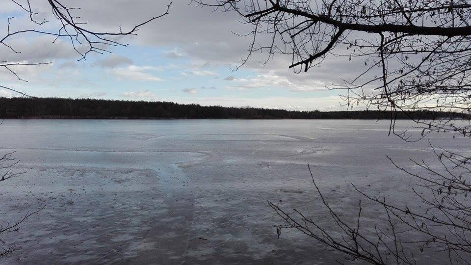Pohled na zamrzlý rybník Buňkov
