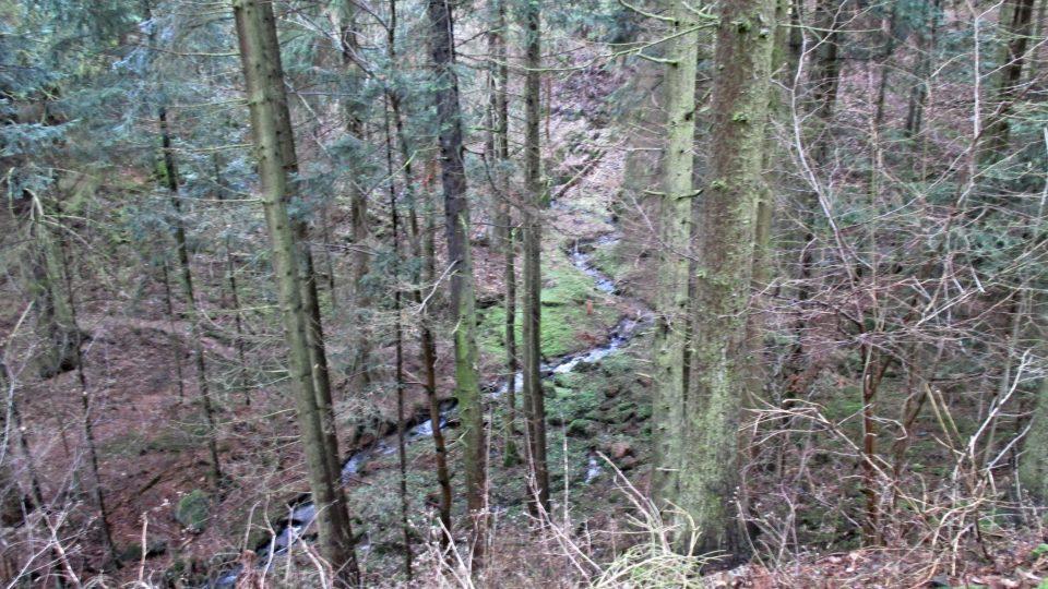 Ostře zaříznuté údolíčko Žebnického potoka