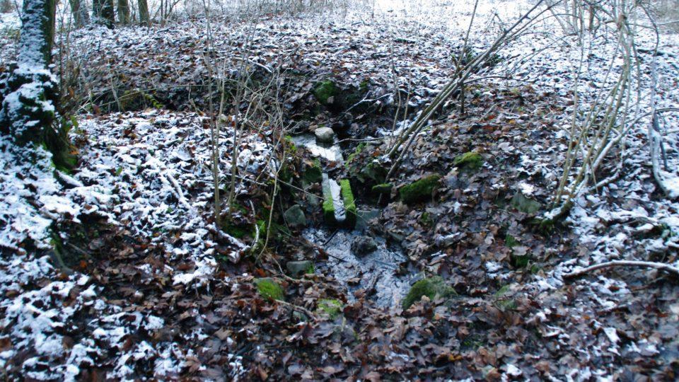 Voda z pramene se ztrácí přímo u cesty