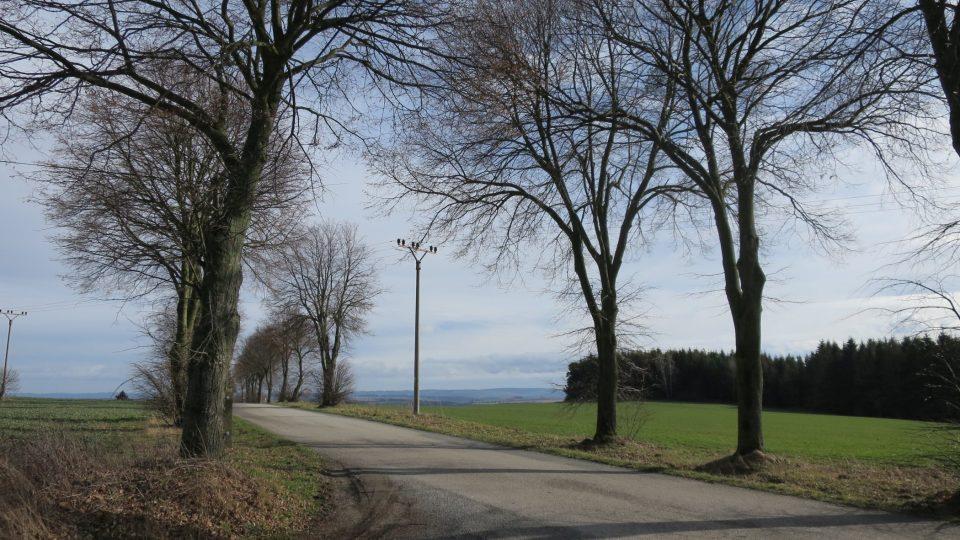 Trasa vede po silnicích i v náročnějším terénu lesy