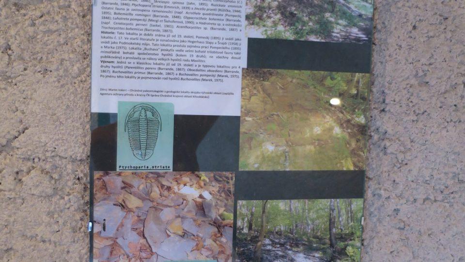 Panel s popisem lokality Buchava, odkud je suť , kde můžete stále ještě trilobity najít
