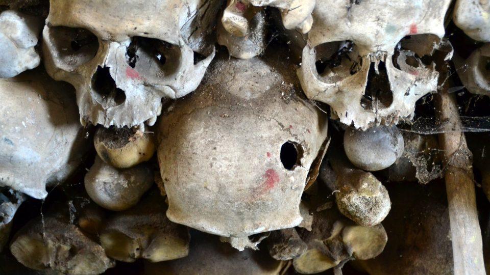 Ostatky zemřelých vojáků a jejich rodin byly exhumovány ze společného hrobu a přemístěny do kostnice