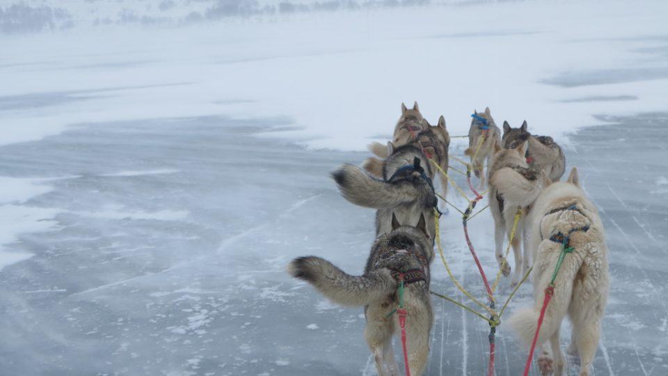 Spřežení na zamrzlém jezeře