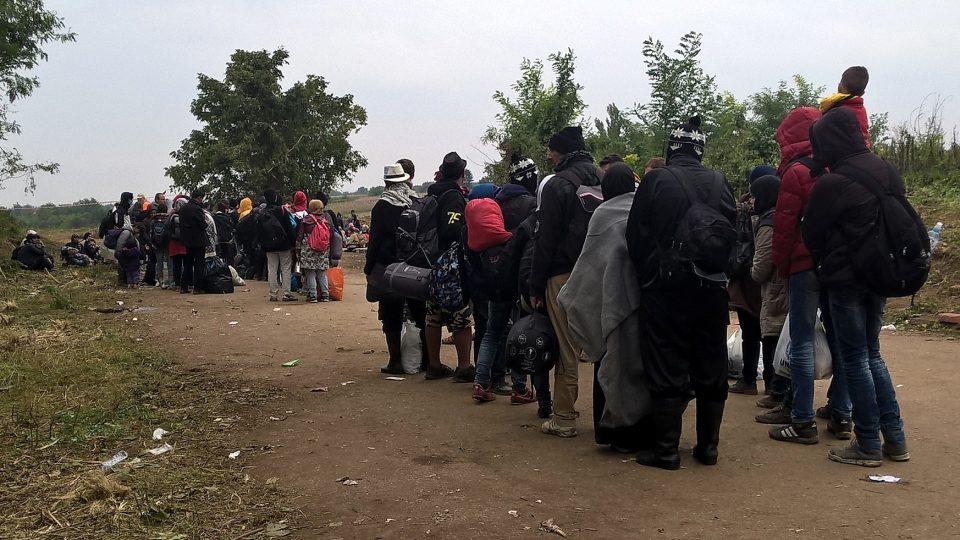 Dobrovolníci rozdělovali uprchlíky do skupinek po 50. Jedině tak se vešli do autobusů jedoucích do Chorvatska
