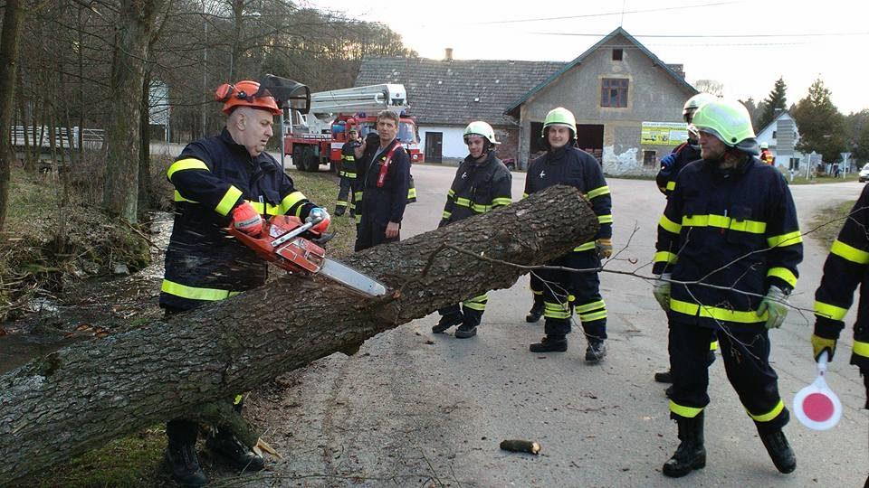 Kácení stromů v místní části Bystříčko 2016