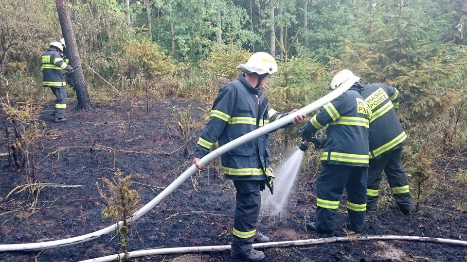Hasiči z Pomezí zasahují u požáru lesa v Stříteži, srpen 2015