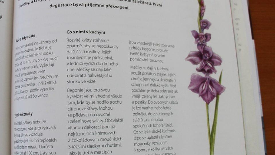 Květinová kuchařka Jany Vlkové