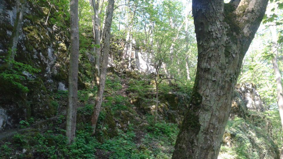 Zajímavé jsou také skalní masivy v okolí Pekárny
