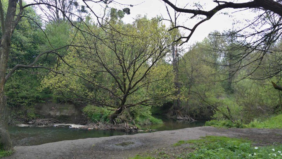 Okolí řeky Lučiny