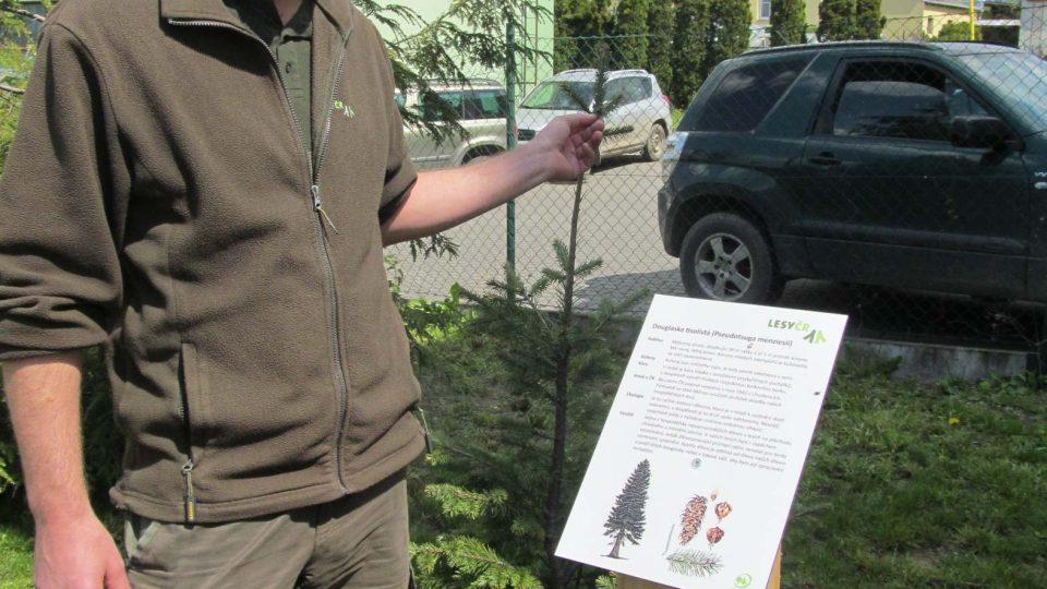 Tady učí lesní správce Jiří Groda poznávat stromy