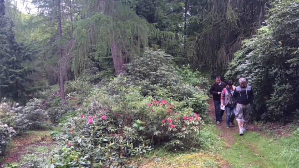 Arboretum Víta Fritscheho