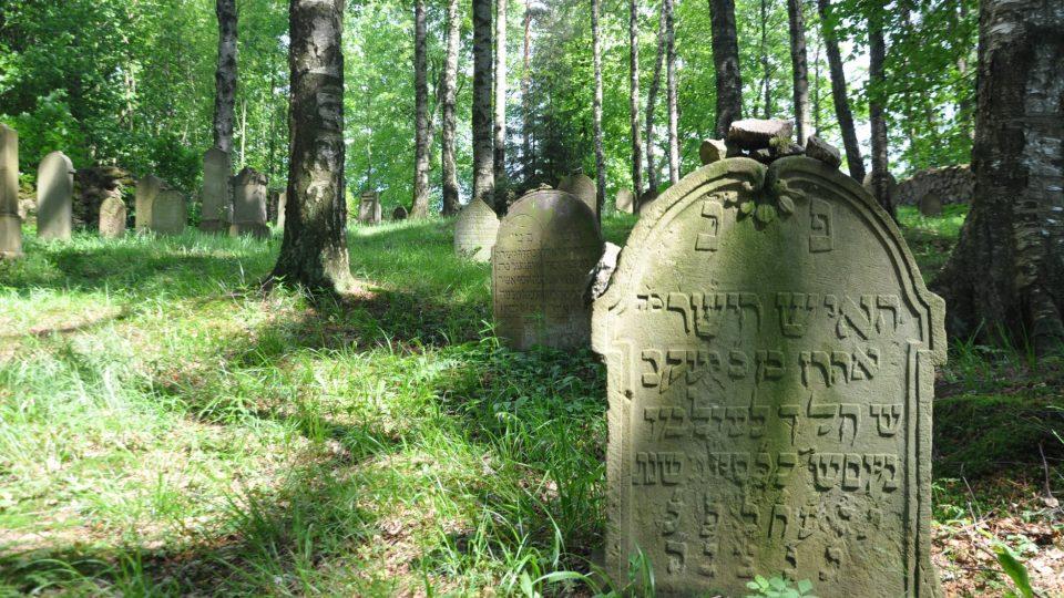 Jeden ze starších náhrobků dřevíkovského židovského hřbitova