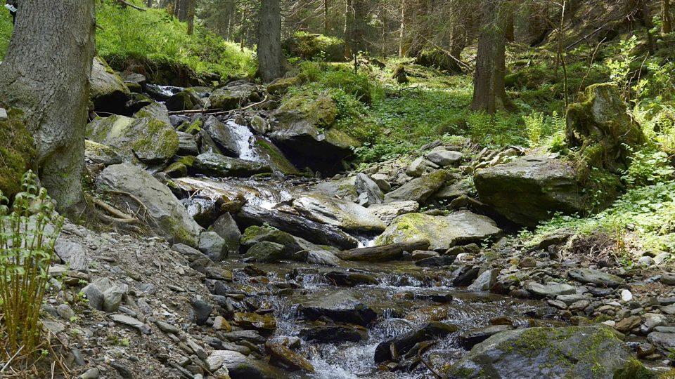 Vavřinecký potok