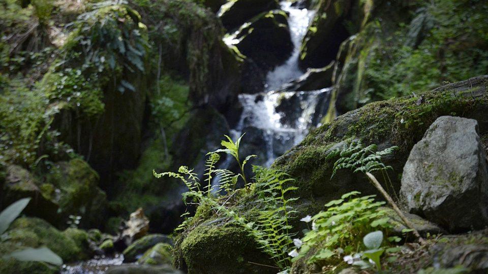 Vavřincův a Tippeltův vodopád patří k nejkrásnějším místům v Krkonoších