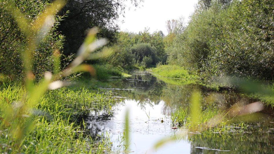 Okolo řeky Visly je krásná příroda
