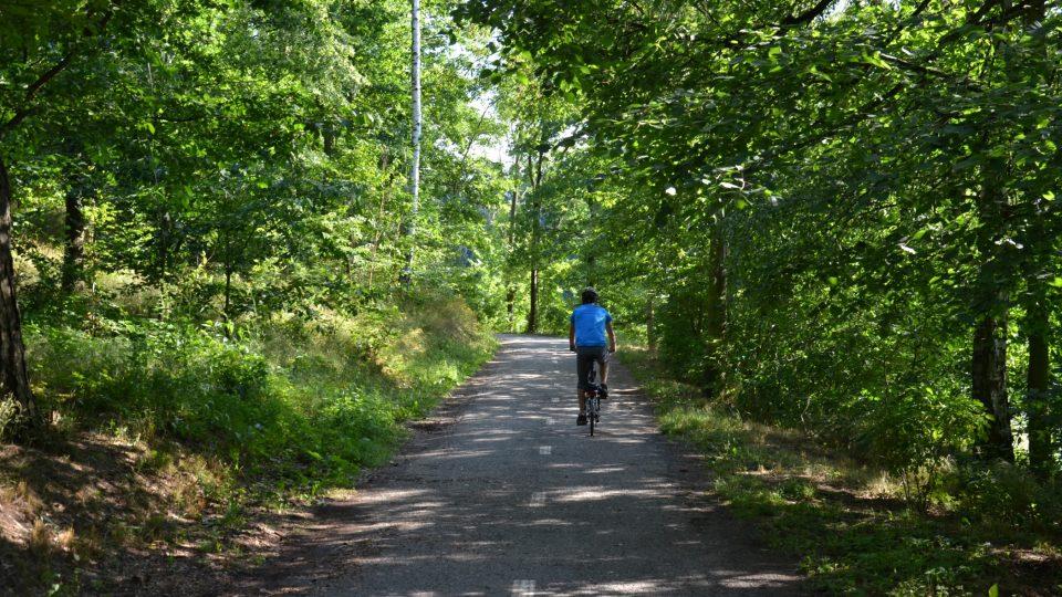 V okolí přehrady najdete vycházkové cesty i cyklostezku