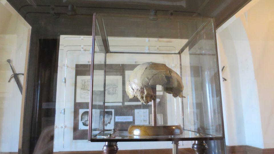 Kalva Žižky ve vitríně Pietní síně na radnici v Čáslavi