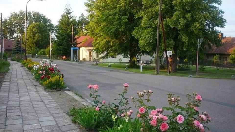 Kvetoucí záhony květin jsou už několik desetiletí pýchou Libníkovic na Královéhradecku