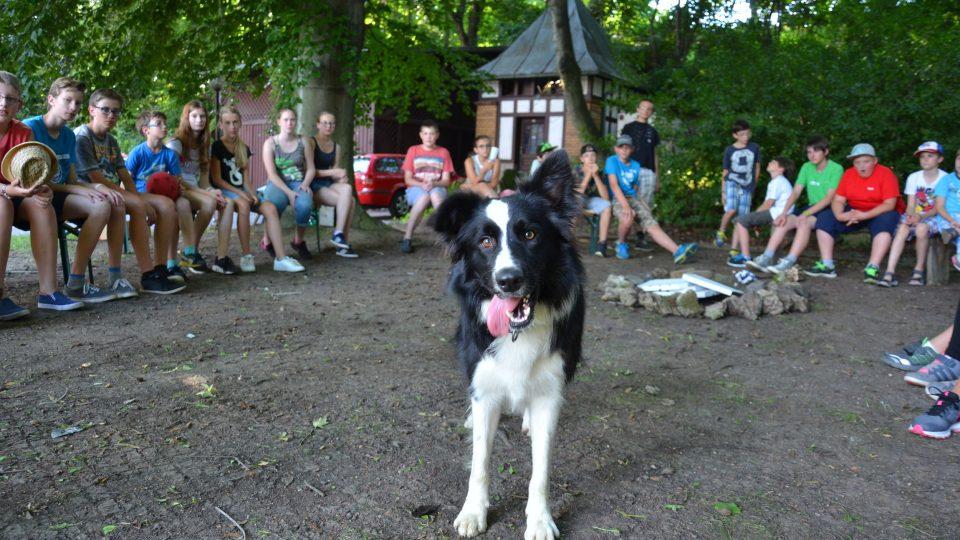 Kruh kolem ohniště a táborový pes Čert