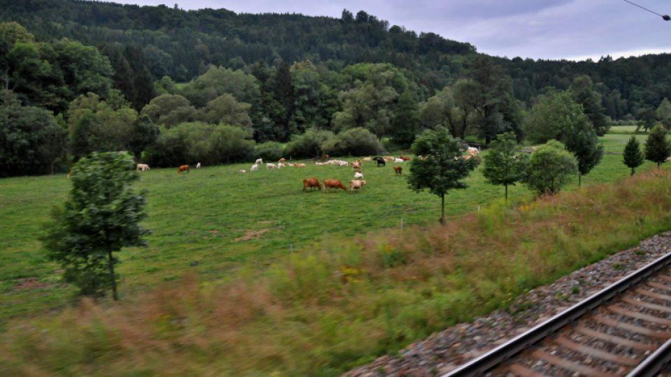 Poetický pohled z vlaku do Údolí Tiché Orlice