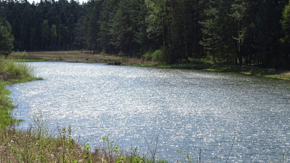 Hamr na Jezeře na severu Čech je místo vyhledávané turisty, kteří sem nejčastěji jezdí k vodě nebo na novou in-line stezku