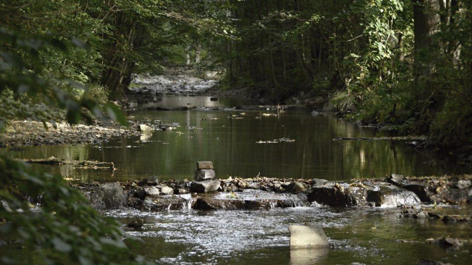 Údolí Zlatého potoka
