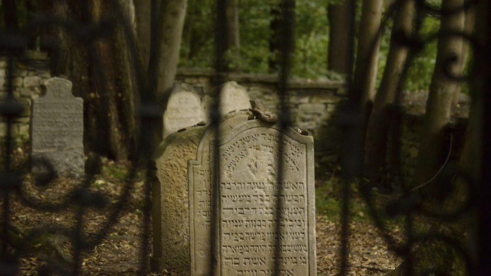Židovský hřbitov v lese