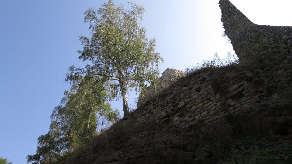 Pohled na věž zespoda je úchvatný díky břízám i díky zbytkům vedlejší zdi hradního paláce