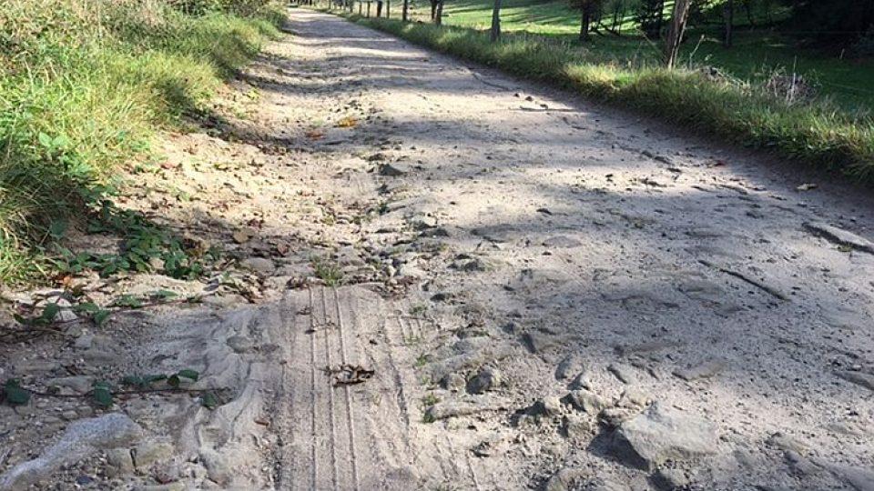 Silnice hrůzy na Broumovsku. Od války ji nikdo neudržuje. Odmítají po ní jezdit popeláři i pošťáci