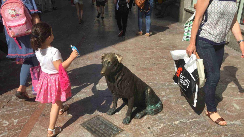 Pes Rufo se stal v Oviedu legendou