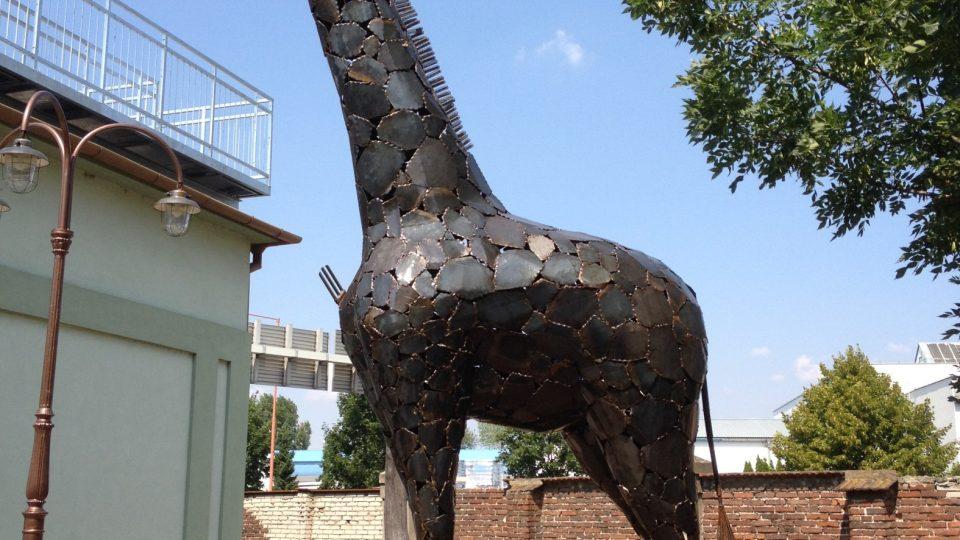 Obdivovat můžete například gorilu, koně, želvy, bizona, žirafu, nosorožce a spousta dalších