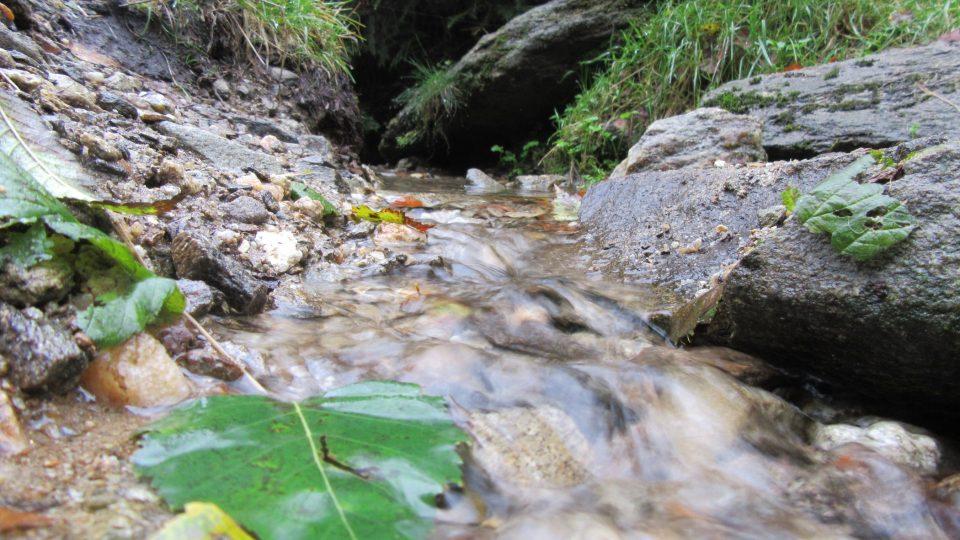 Radbuza pramení v Pivoňských horách