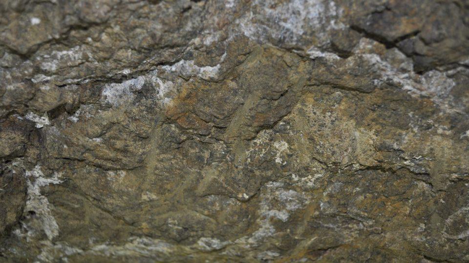 Podzemní prostory jsou vykopány v hornině nazývané serpentinit nebo hadec