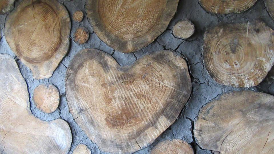 Stavba srdcem
