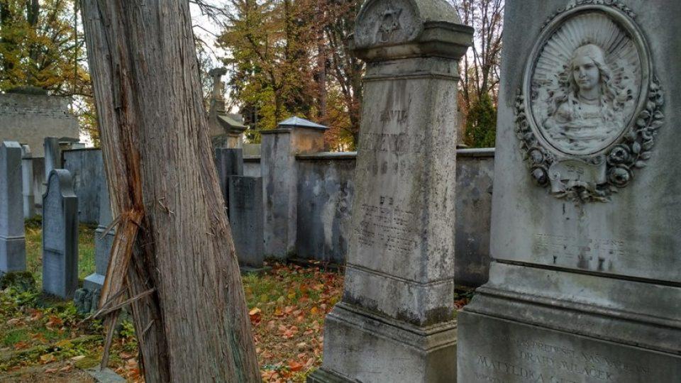 Nový židovský hřbitov je uzavřen, ale na požádání ho správce Josef Kraus rád otevře