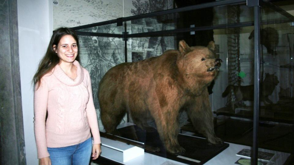 Vypreparovaného posledního českého medvěda, přesněji řečeno medvědici, mají v pobočce Národního zemědělského muzea Ohrada u Hluboké nad Vltavou