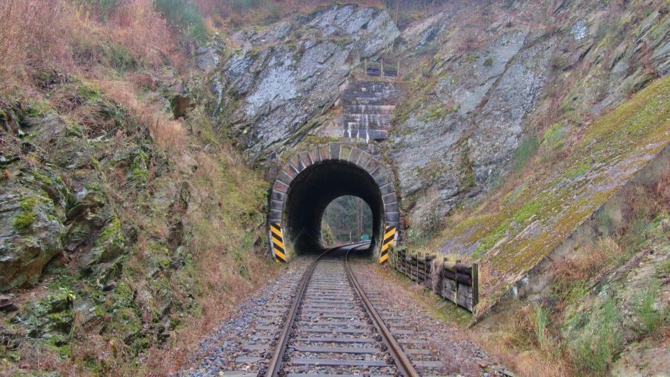 Díky tunelu nemusí zvěř přes koleje