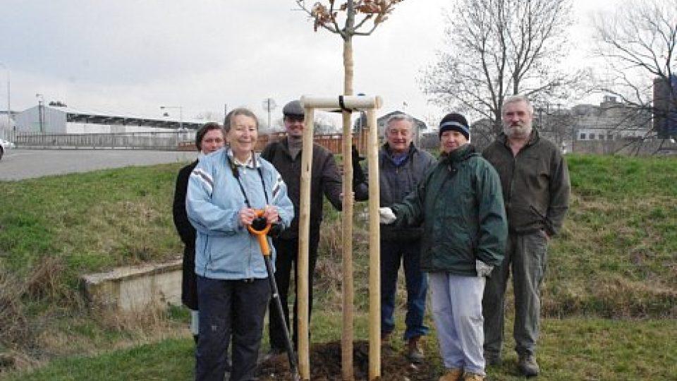 Účastníci sázení památného stromu k výročí bitvy na Luckém poli