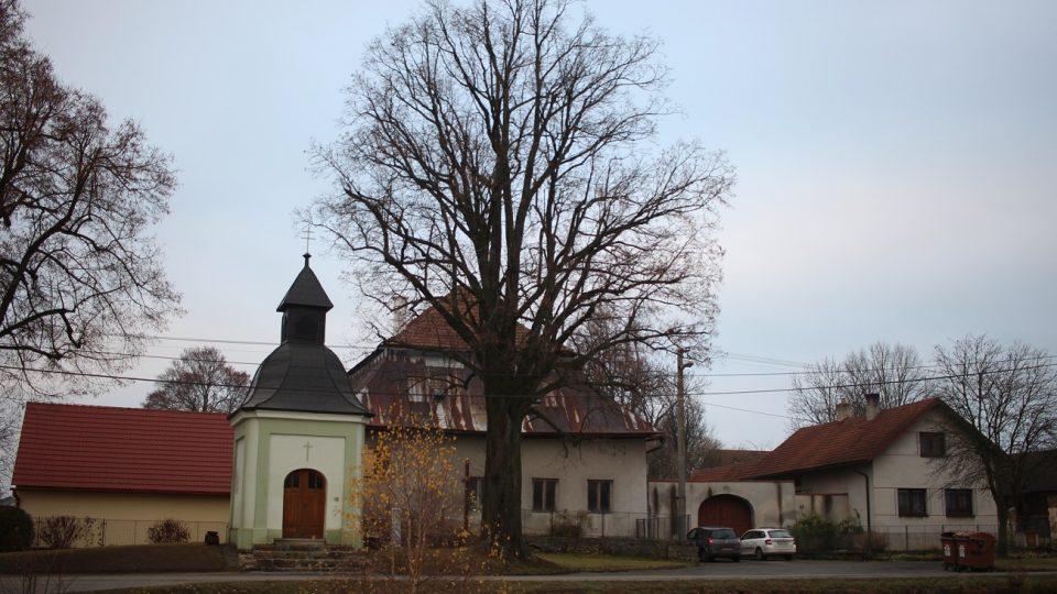 Bývalá rychta, dnešní Muzeum Horního Pooslaví