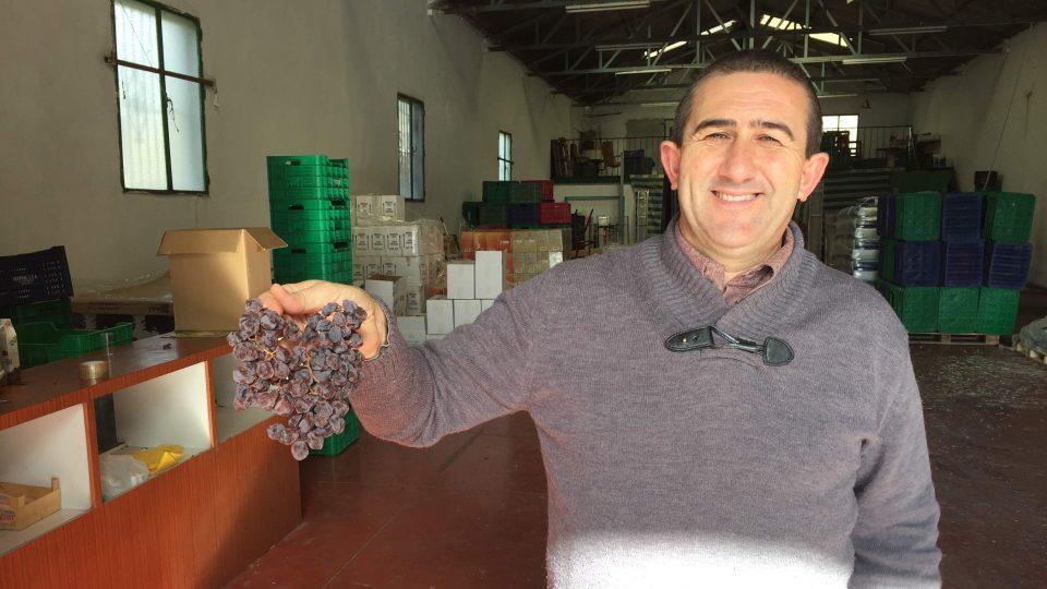 Starosta Almácharu Jose Gamez-Guterez pomáhal s prací na vinici už jako malý školák