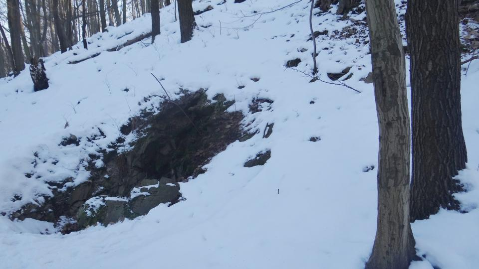 Jeskyně je zimovištěm netopýrů a vrápenců. Člověk se ale dovnitř běžně nedostane, jedině se speciálním povolením