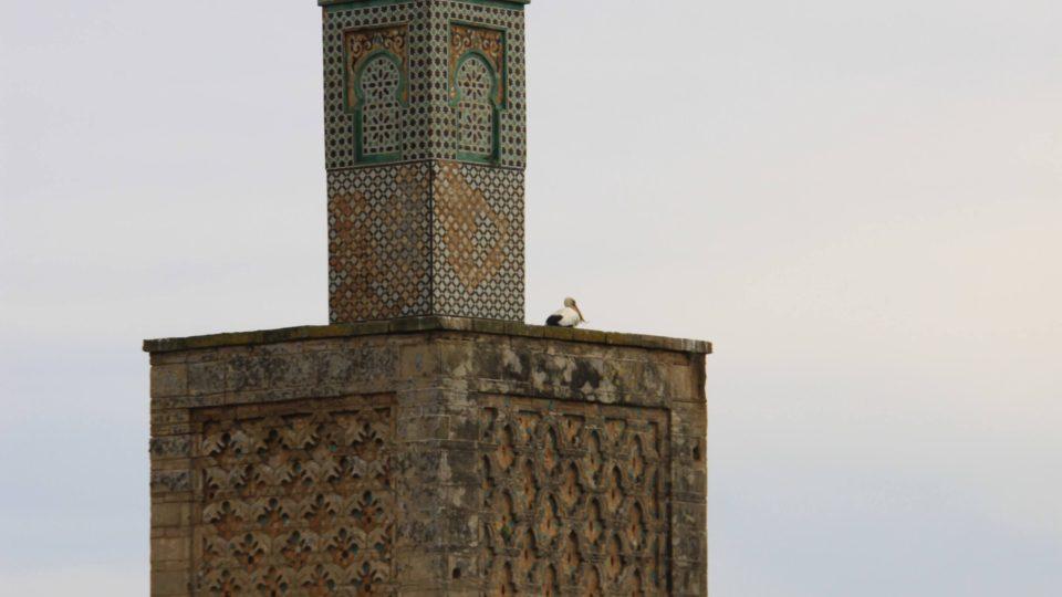 Minaret, starý více než 700 let, je současně nejvyšší stavbu celého komplexu