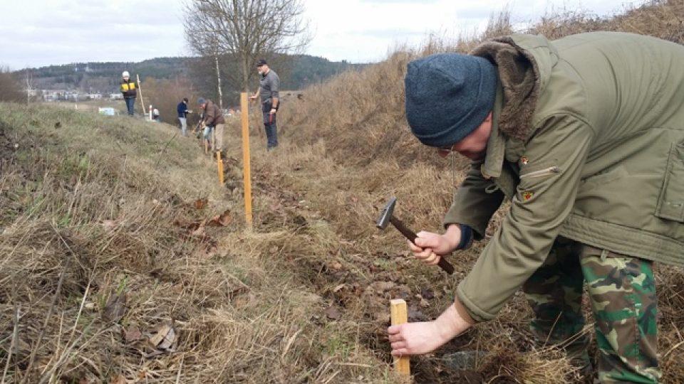 Dobrovolníci staví takzvané migrační zábrany pro žáby u výpadovky ze Strakonic směrem na Volyni