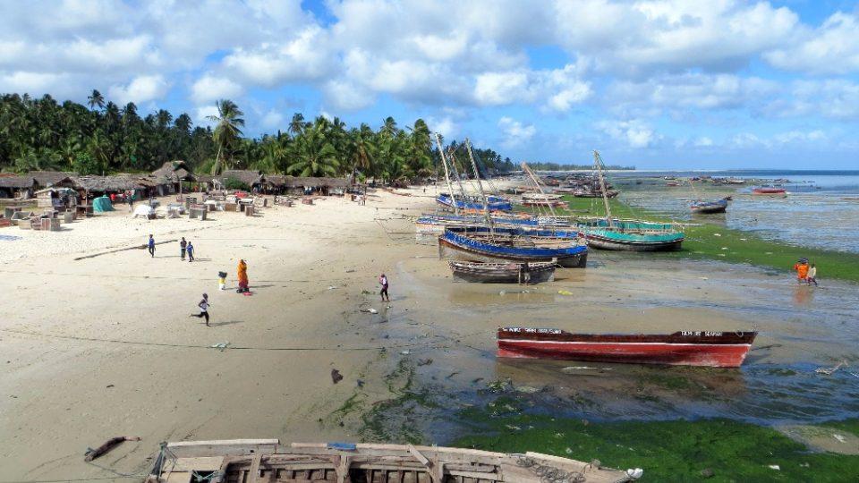 Dva roky prázdnin v Tanzanii - Mafia Island