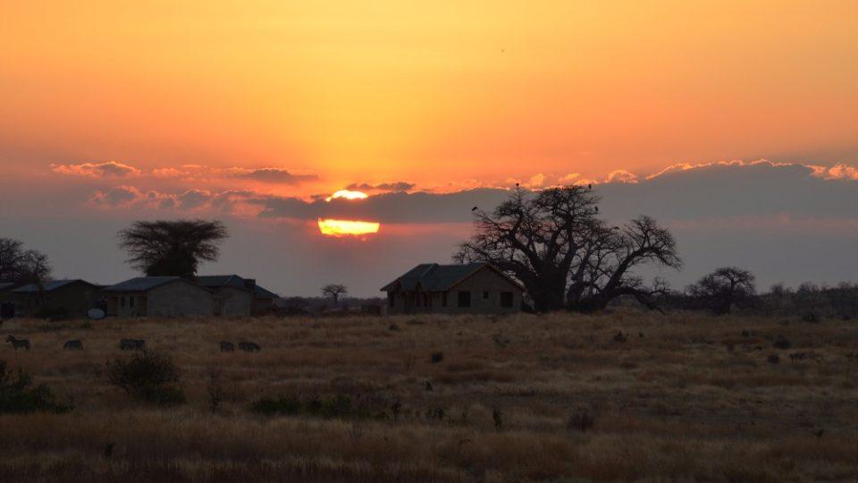 Dva roky prázdnin v Tanzanii - Ruaha NP
